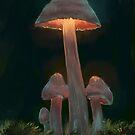 Fairy Streetlights by FaerytaleWings