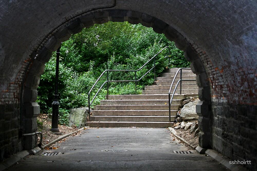 Home Alone Bridge, NY by sshhoirtt