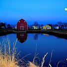Barnyard Reflections by Larry Trupp