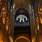 Notre Dame Cathedral  by StonePics