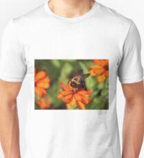 Bumblebee On Zinnia T-Shirt