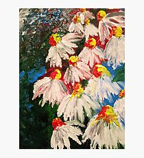 Finger Painted Flowers Photographic Print