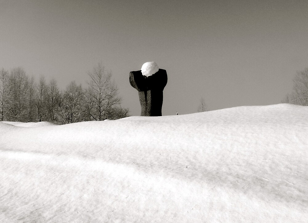 sculpture in snow by melb100