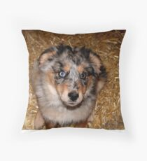 One more treat please!!! Throw Pillow