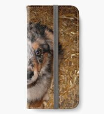 One more treat please!!! iPhone Wallet/Case/Skin