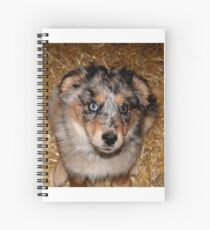 One more treat please!!! Spiral Notebook