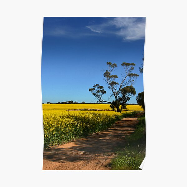 A Yellow Road Poster
