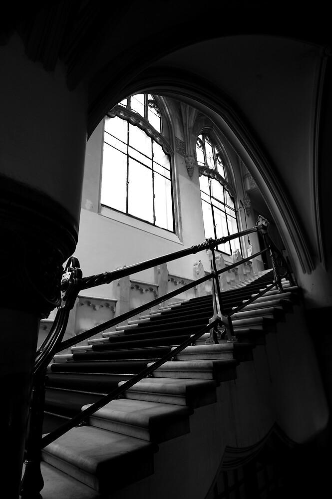 Budapest Stairway by ragman