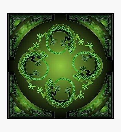 Green Gecko Photographic Print