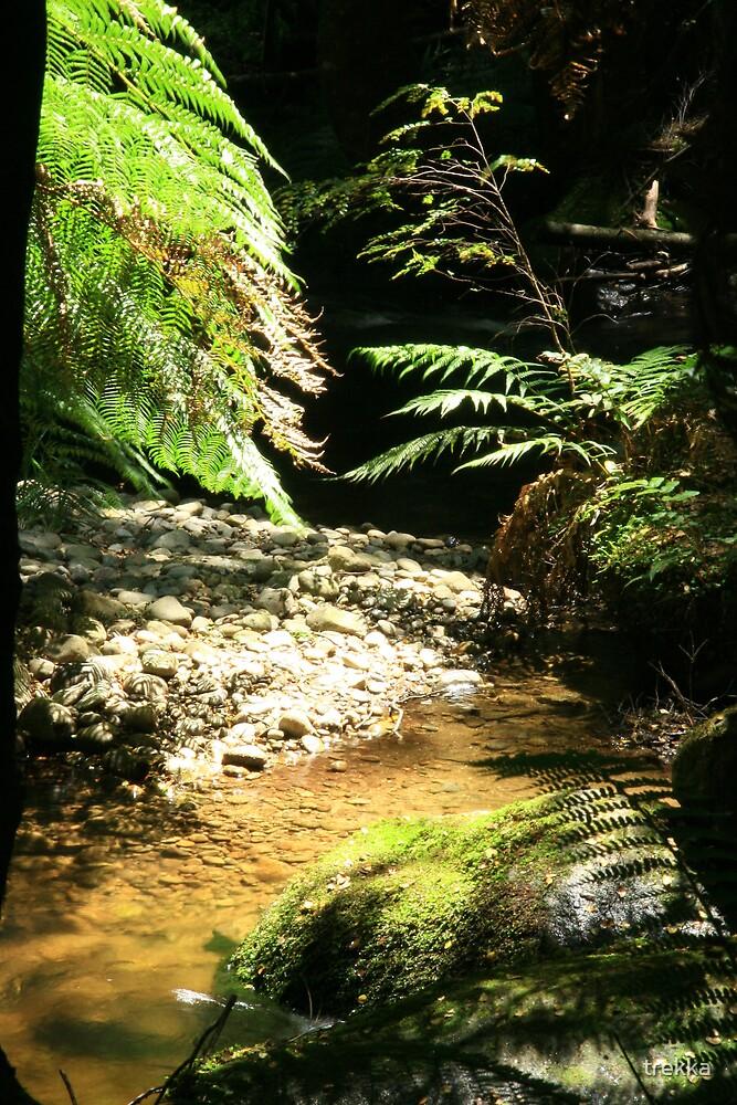 Babbling Brook by trekka