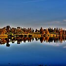 Reflections in the Park by Larry Trupp