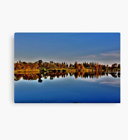 Reflections in the Park Canvas Print