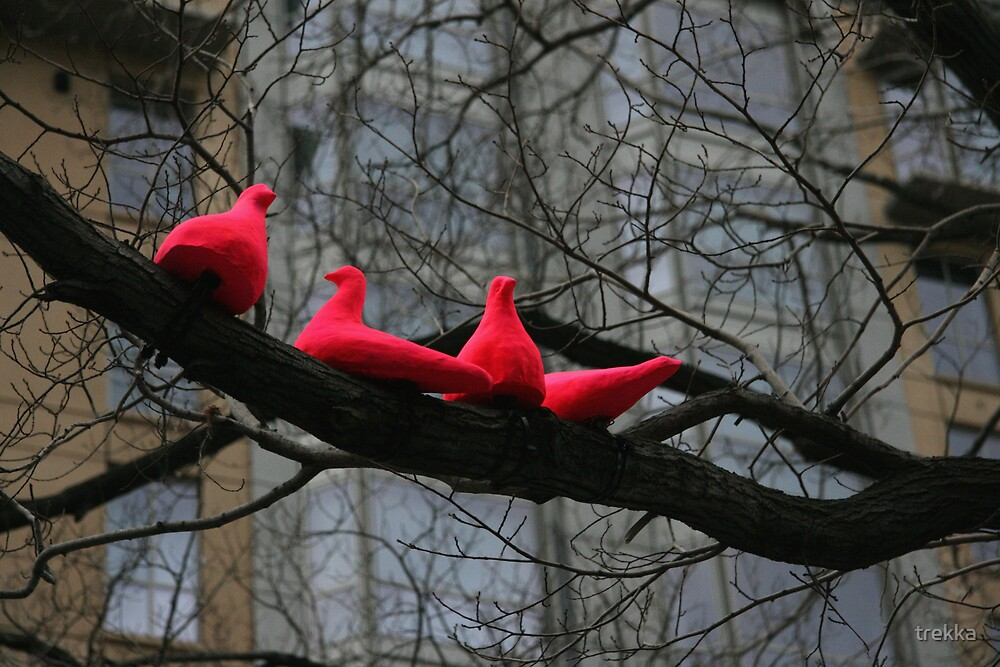 Pink Doves by trekka