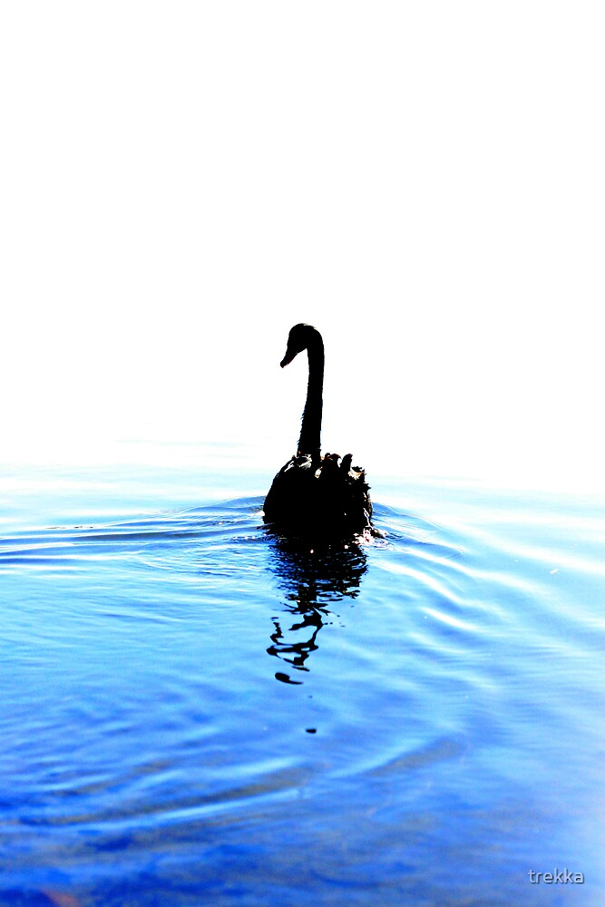 Swan Lake by trekka