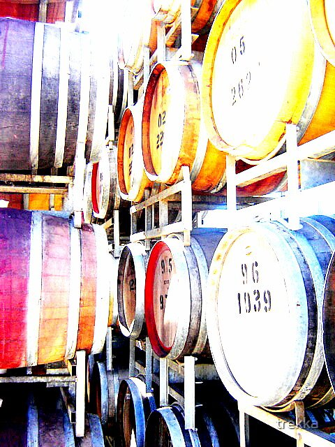 The Colours of wine by trekka