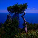 Capri by konsolakism