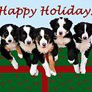 Christmas Puppy Present by Coralie Plozza