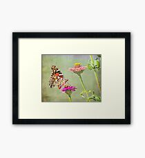 Butterfly Perched Framed Print