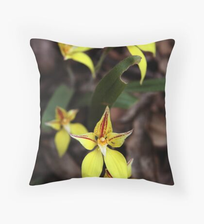 Cowslip orchid Throw Pillow