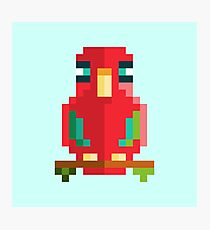 Scarlet Macaw Pixel Art Photographic Print