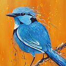 Bird Series - Blue Wren by tank