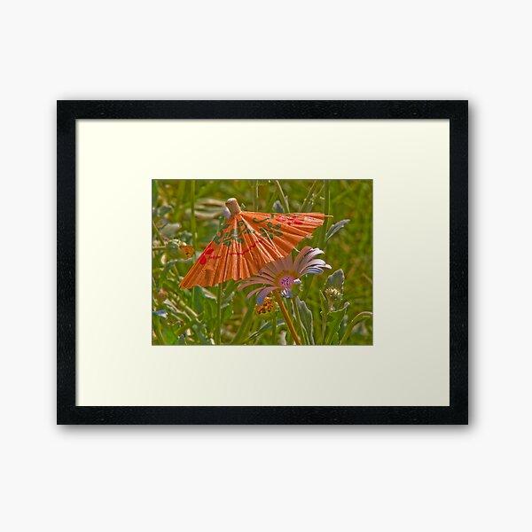 Umbrella for my daisy! Framed Art Print