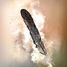 « Plume » par Chrystelle Hubert