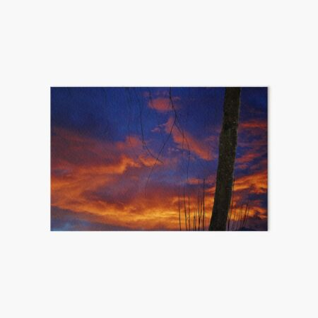 Sunset Blues Art Board Print