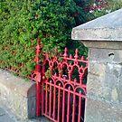 red gate by delfinada