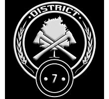 1000  images about The Districts Of Panem on Pinterest | Textiles ...