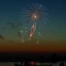fireworks over lake by Don Cox