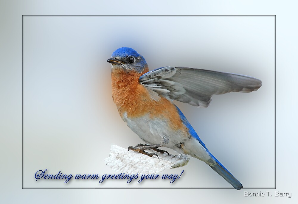 Sending warm greetings your way! by Bonnie T.  Barry