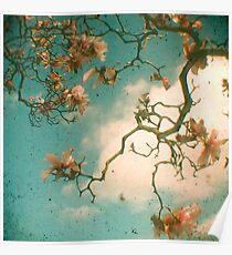 Magnolia Falls Poster