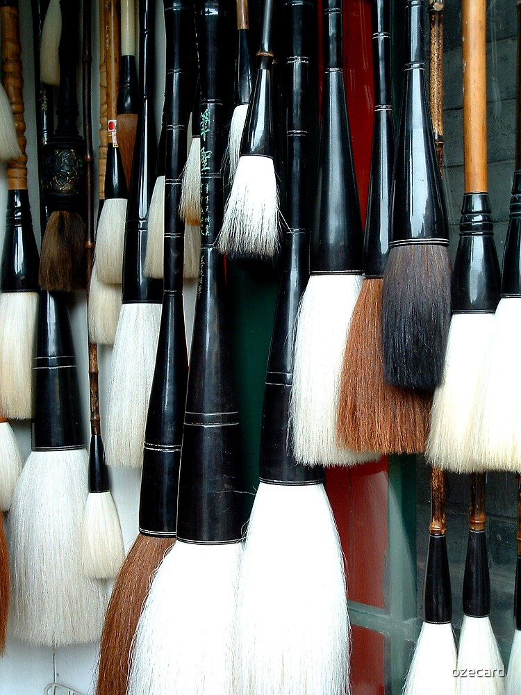 Brushes by ozecard