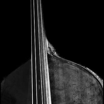Bass 5 by AlanHarman