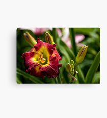 """Dragon King"" Daylily Canvas Print"