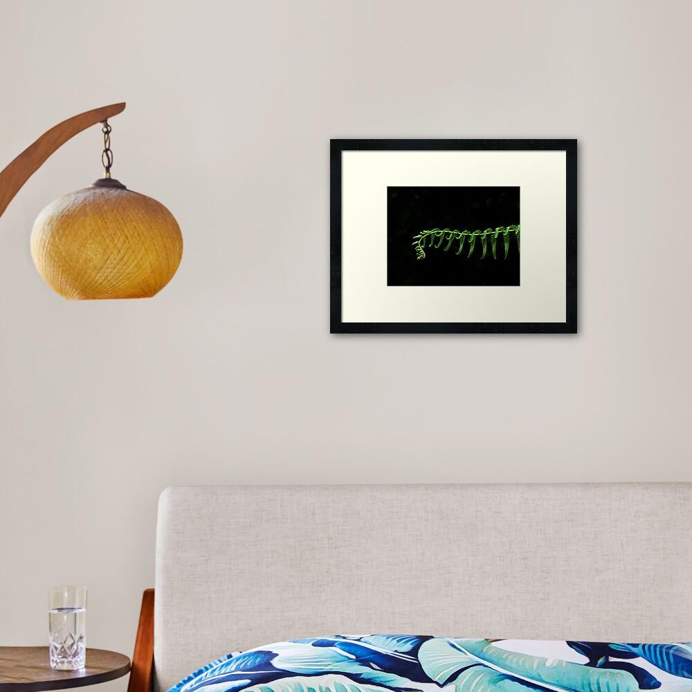 Fern Frond Framed Art Print