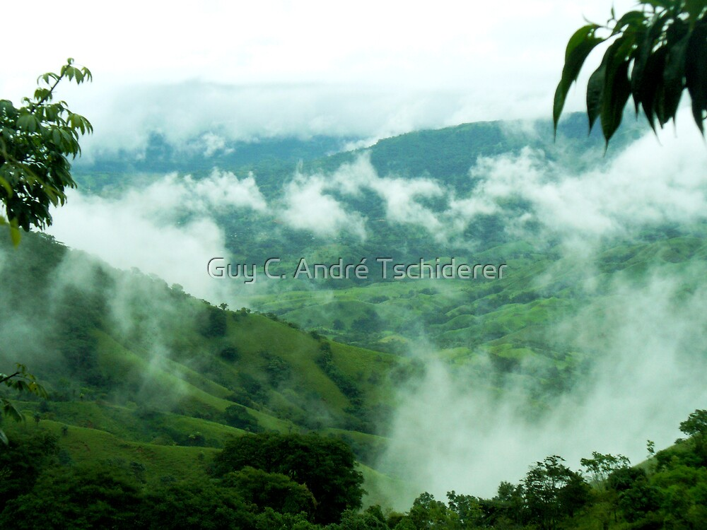 Coffee Land in the clouds, Puriscal, Costa Rica by Guy C. André Tschiderer