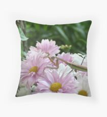 Chinese Mantid Throw Pillow