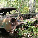 old car by Sheila McCrea