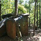 old rusty car by Sheila McCrea