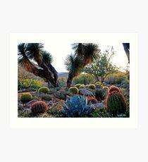 Desert Diversity Art Print
