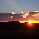 sunset by Sheila McCrea
