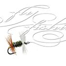 Fly Fishing Renegade  by corsetti