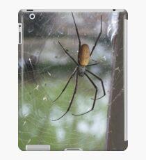 Spinne, Spinne iPad-Hülle & Klebefolie