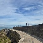 Harbour Wall at Lyme Dorset UK by lynn carter