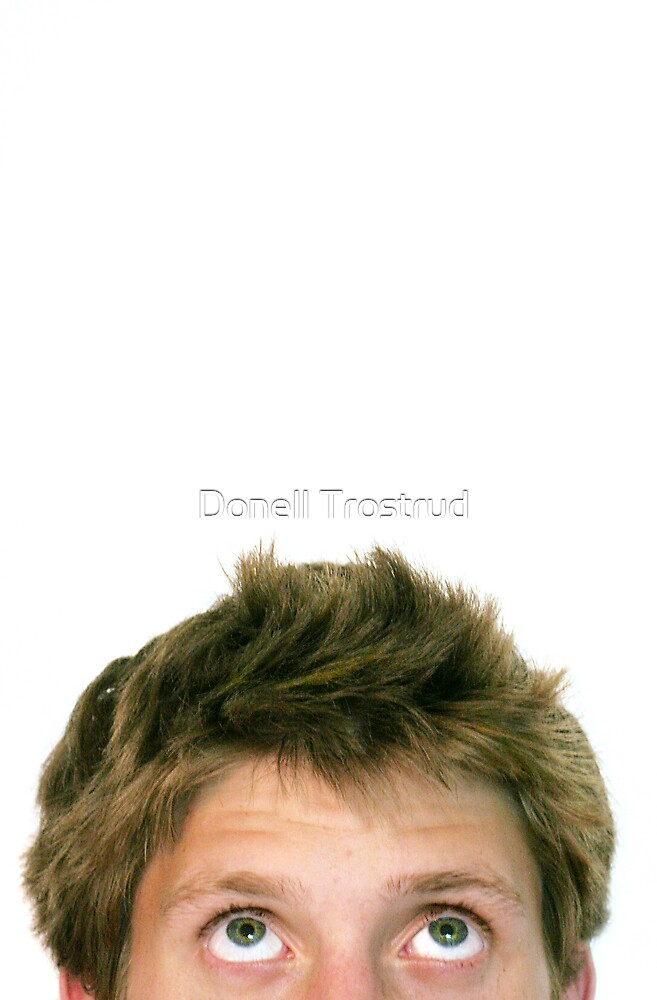 Bad Hair Day by Donell Trostrud
