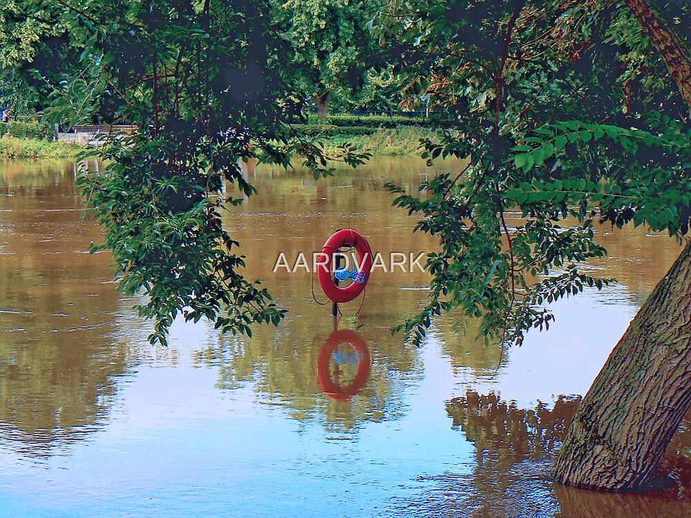 Flood by AARDVARK