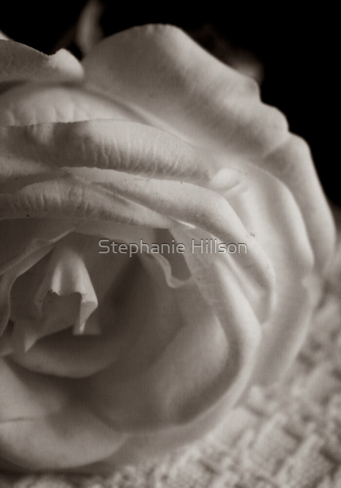 Until The End Of Time ... by Stephanie Hillson