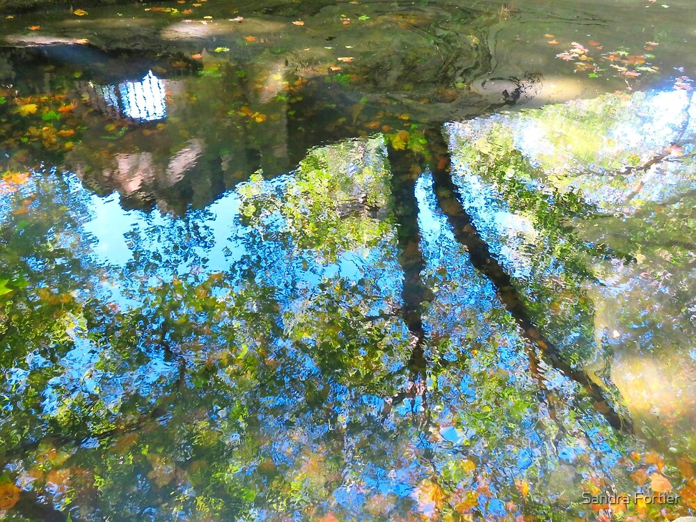 Puddle Art by Sandra Fortier